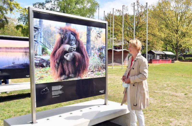 Outdoor-Fotoausstellung im Zoo Rostock