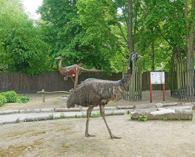 Ein Dino zieht im Zoo Hoyerswerda ein
